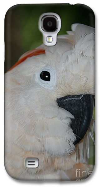 Salmon Crested Cockatoo Galaxy S4 Case by Sharon Mau