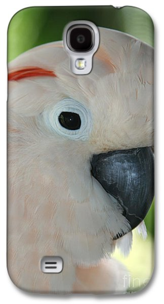 Salmon Crested Moluccan Cockatoo Galaxy S4 Case by Sharon Mau