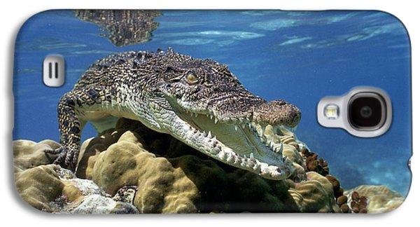 Saltwater Crocodile Smile Galaxy S4 Case