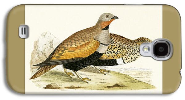 Sand Grouse Galaxy S4 Case