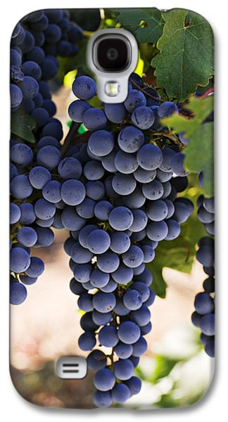 Sauvignon Grapes Galaxy S4 Case by Garry Gay