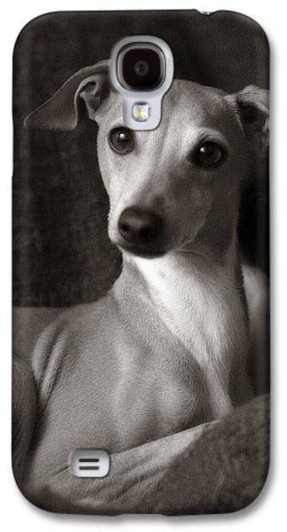 Say What Italian Greyhound Galaxy S4 Case by Angela Rath