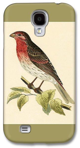 Scarlet Bullfinch Galaxy S4 Case