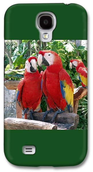 Scarlet Macaws Galaxy S4 Case