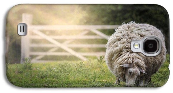 Sheep Galaxy S4 Case