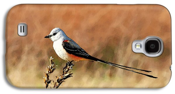 Scissor-tailed Flycatcher Galaxy S4 Case by Betty LaRue