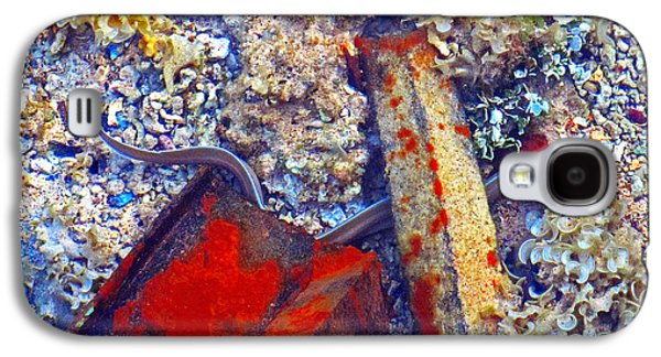 Sea. Corals. Rusty Iron And Little Moray.  Galaxy S4 Case