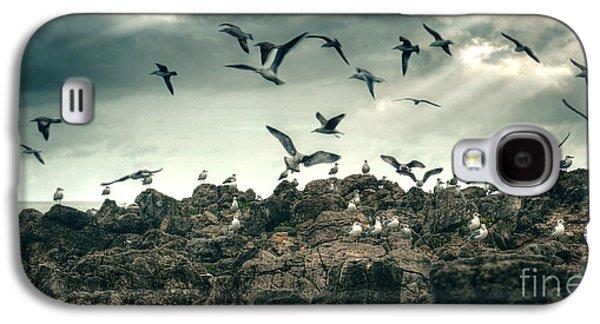 Sea Gulls Galaxy S4 Case by Carlos Caetano