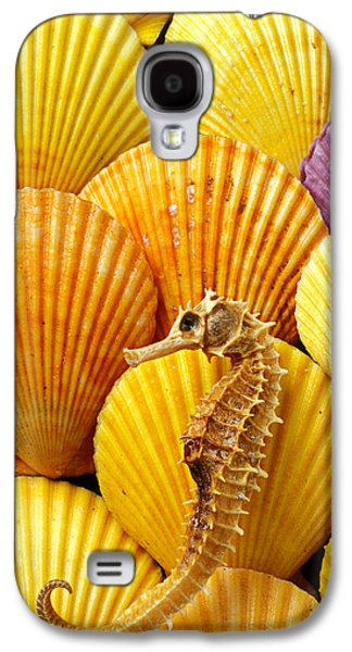 Sea Horse And Sea Shells Galaxy S4 Case by Garry Gay