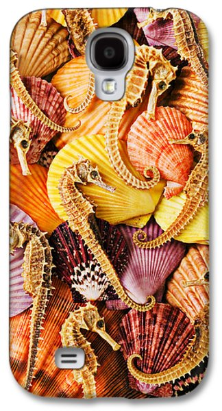Sea Horses And Sea Shells Galaxy S4 Case