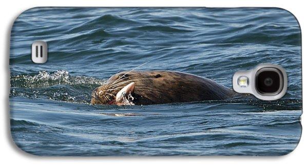 Sea Lion Meal Galaxy S4 Case
