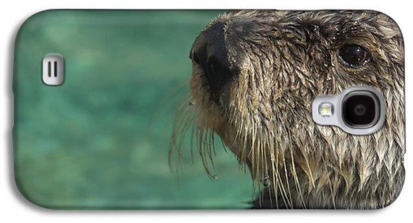 Sea Otter Stare Down Galaxy S4 Case