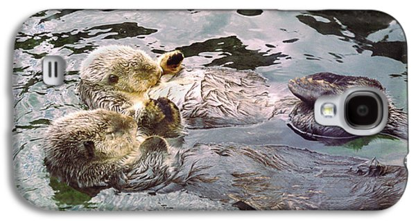 Sea Otters Holding Hands Galaxy S4 Case by BuffaloWorks Photography