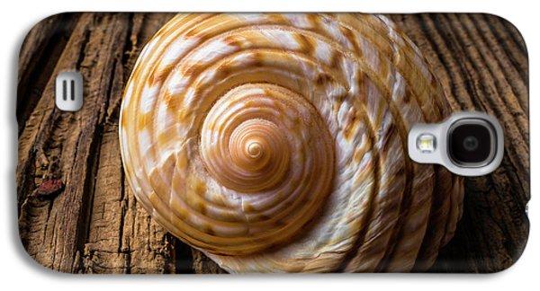 Sea Shell Study In Brown Tones Galaxy S4 Case