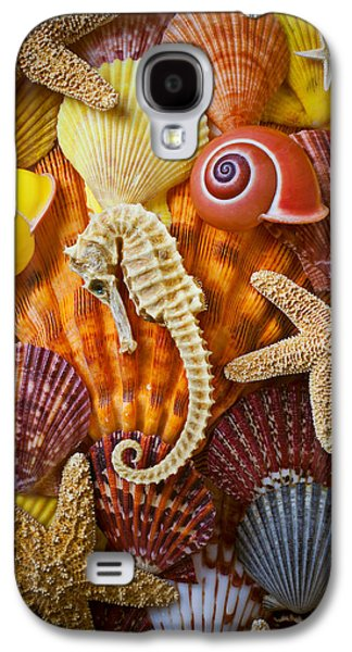 Seahorse And Assorted Sea Shells Galaxy S4 Case by Garry Gay