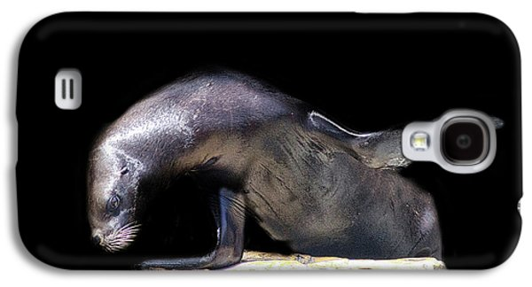 Sealion Wave Galaxy S4 Case