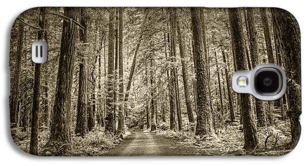 Sepia Tone Of A Road In A Rain Forest Galaxy S4 Case by Randall Nyhof