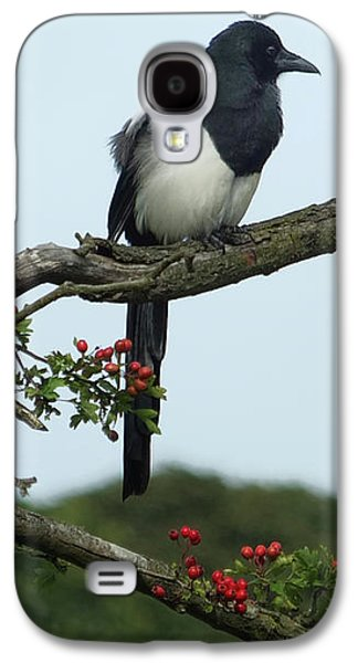 September Magpie Galaxy S4 Case by Philip Openshaw