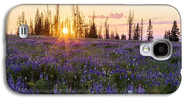 Shades Galaxy S4 Case by Chad Dutson