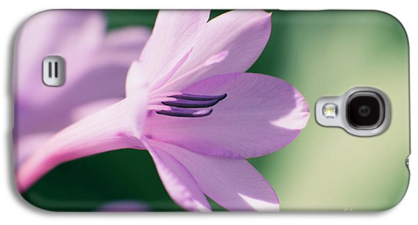 Galaxy S4 Case featuring the photograph She Listens Like Spring by Linda Lees