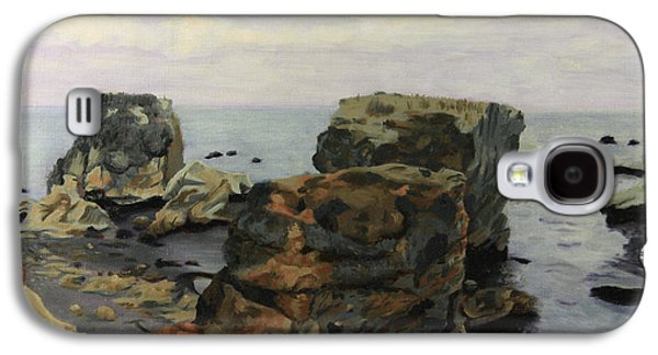 Shell Beach  Galaxy S4 Case by Shelley Irish