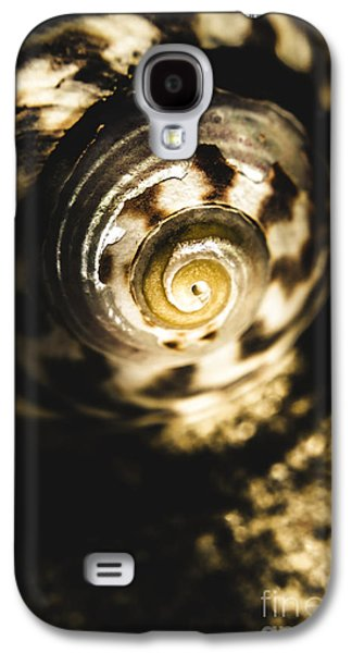 Shells In Detail Galaxy S4 Case by Jorgo Photography - Wall Art Gallery