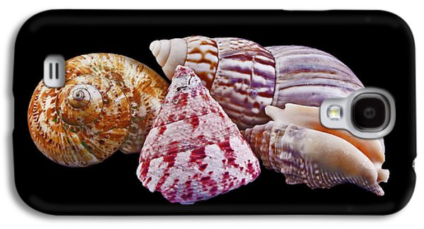 Galaxy S4 Case featuring the photograph Shells On Black by Bill Barber