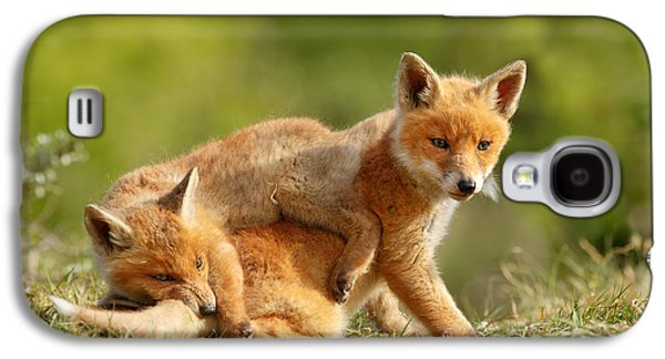 Sibbling Love - Playing Fox Cubs Galaxy S4 Case by Roeselien Raimond