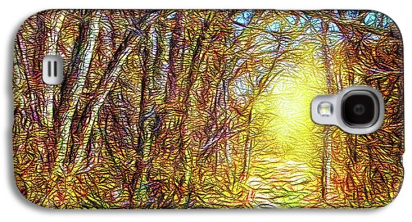 Silence Of A Forest Path Galaxy S4 Case by Joel Bruce Wallach
