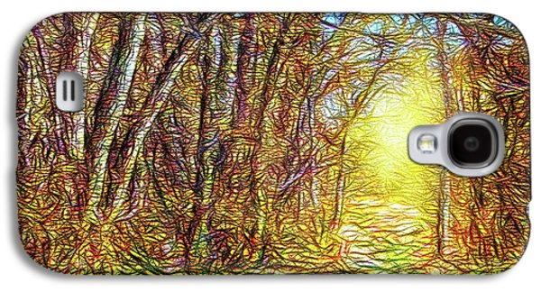 Silence Of A Forest Path Galaxy S4 Case