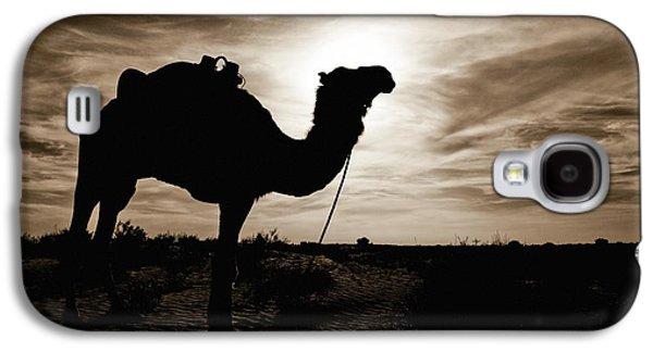 Desert Galaxy S4 Case - Silhouetted Camel, Sahara Desert, Douz by David DuChemin
