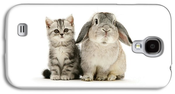 Silver Tabby And Rabby Galaxy S4 Case