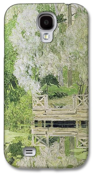 Weeping Galaxy S4 Cases - Silver White Willow Galaxy S4 Case by Aleksandr Jakovlevic Golovin