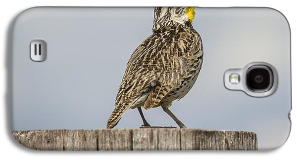 Singing A Song Galaxy S4 Case by Thomas Young