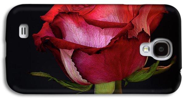 Single Rose Galaxy S4 Case