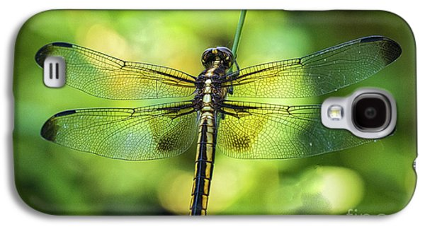 Skimmer Dragonfly Galaxy S4 Case
