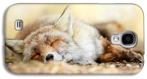 Sleeping Beauty -red Fox In Rest Galaxy S4 Case by Roeselien Raimond