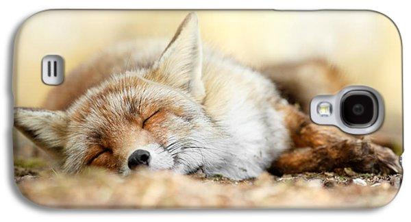 Sleeping Beauty -red Fox In Rest Galaxy S4 Case by Roeselien Raimond