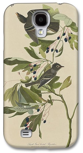 Flycatcher Galaxy S4 Case - Small Green-crested Flycatcher by Dreyer Wildlife Print Collections