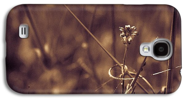 Galaxy S4 Case featuring the photograph Small by Lora Lee Chapman