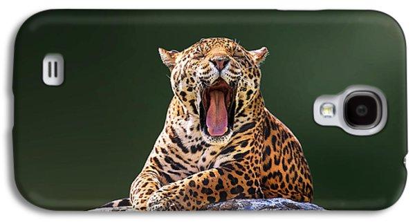 Smile Galaxy S4 Case by Ivan Vukelic