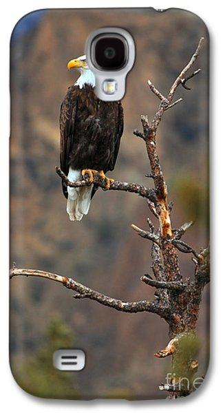 Smith Rock Bald Eagle Galaxy S4 Case