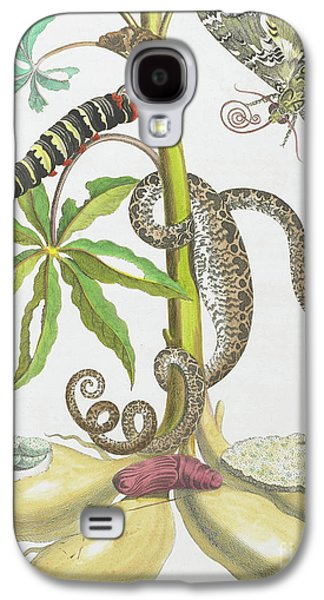Snake, Caterpillar, Butterfly, And Insects On Plant Galaxy S4 Case by Maria Sibylla Graff Merian