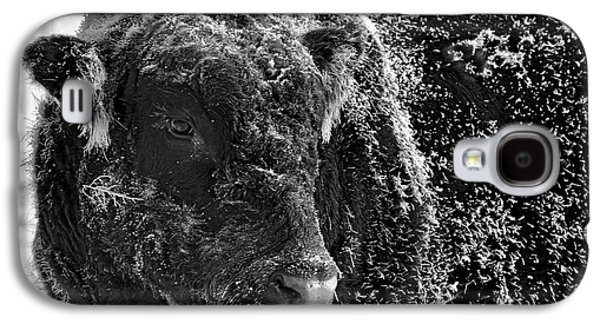 Snow Covered Ice Bull Galaxy S4 Case