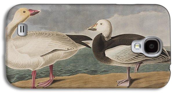 Snow Goose Galaxy S4 Case by John James Audubon