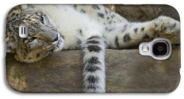 Snow Leopard Nap Galaxy S4 Case by Mike  Dawson