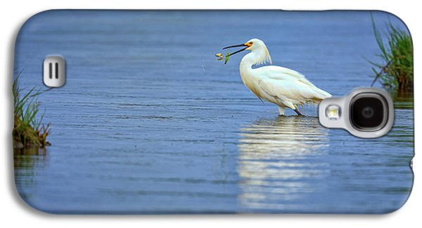Snowy Egret At Dinner Galaxy S4 Case by Rick Berk