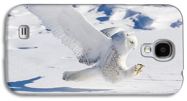 Galaxy S4 Case featuring the photograph Snowy Owl Pouncing by Rikk Flohr
