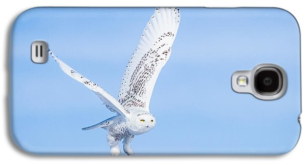 Galaxy S4 Case featuring the photograph Snowy Owls Soaring by Rikk Flohr