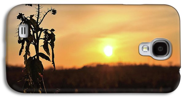 Galaxy S4 Case - Sonnenuntergang by Scimitarable